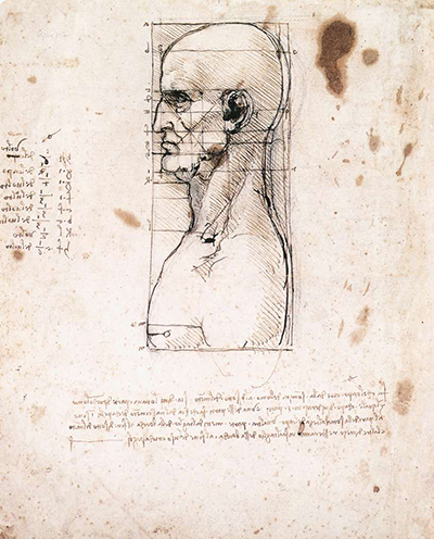 Bust of a Man in Profile with Measurements and Notes Leonardo da Vinci